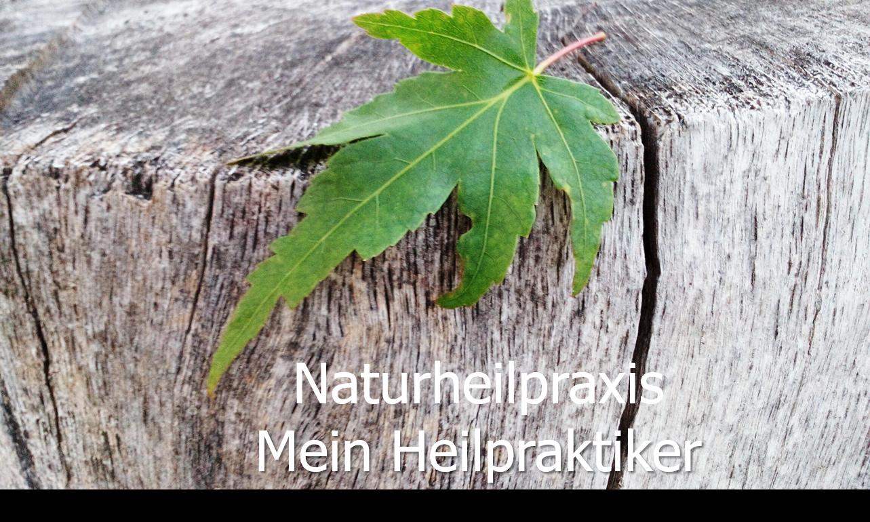 mein Heilpraktiker Naturheilpraxis Manuela Brenk